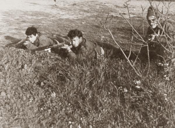 רובים פולנים