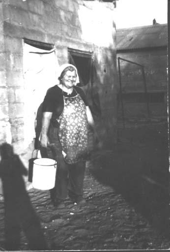 כרמלה לינק - זהבי